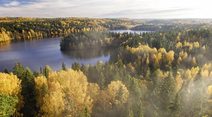 Finnish seasons, autumn. Kuvaaja: Teemu Tretjakov - Vastavalo